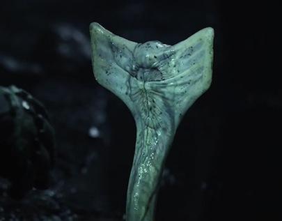 prometheus-alien-snake.jpg
