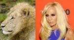 Lion = Donatella Versace