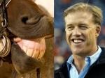 Horse = John Elway