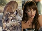 Cougar = Melinda Clarke