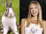 Rabbit = Miriam McDonald