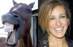 Horse = Sarah Jessica Parker