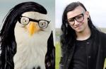 Bald eagle with glasses = Skrillex