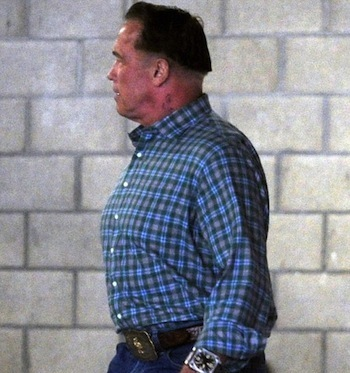 Arnold Schwarzenegger bowl haircut 1