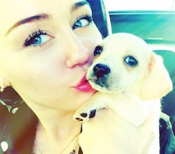 Miley Cyrus bean