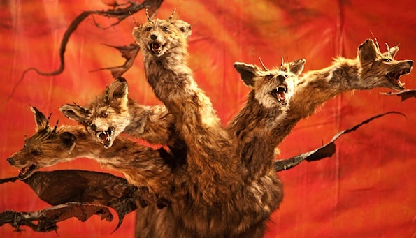 Immortalized taxidermy