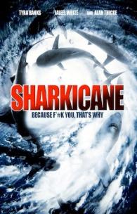Sharkicane poster