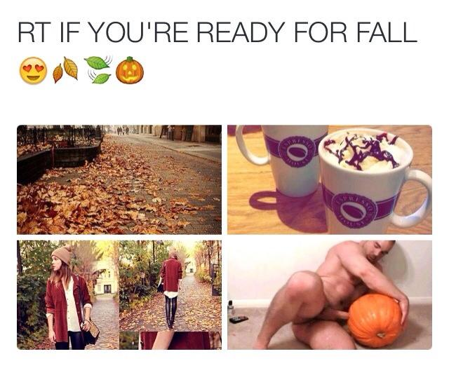 ready for fall pumpkin meme