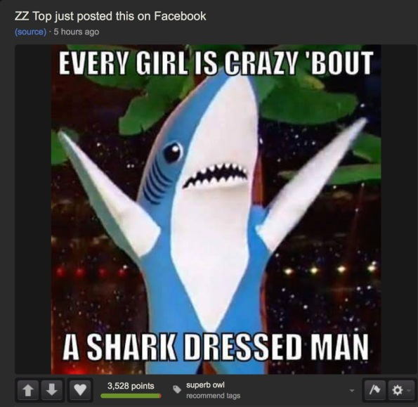 zz top dancing shark super bowl